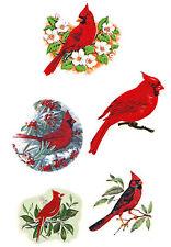 Ceramic Decals Red Cardinal Bird Floral Branch Asst. Designs