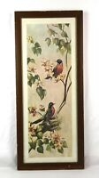Vintage Rf Harnett Robin Birds Lithograph Wall Art Print Kaplan Co Framed