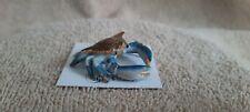 "Little Critterz Blue Crab ""Calli"" Miniature Figurine New Lc925"