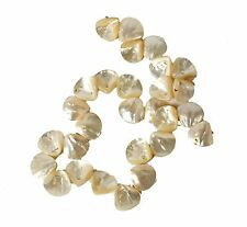String of 28 Shell Beads for Jewellery Making (T29S)