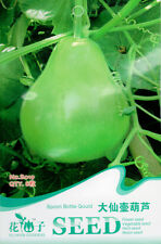 1 Pack 8 Big Spoon Bottle Gourd Seeds Lagenaria Siceraria Organic B019