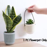 Cactus Succulents Plant Flower Plastic Hanging Pots Flowerpot Garden Home Decor