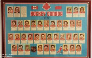 1972 🏒 The Summit In 1972 Authentic Framed Team Canada Poster 37x25 in