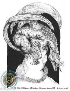 © ART -  Dragon Crystal illustration Fantasy Drawing - Artist Print By Di