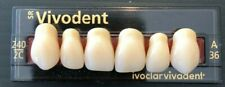 Ivoclar Sr Vivodent Plastic Dentist Dental Lab Denture Teeth A36 2c