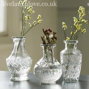 Set Of 3 Assorted Decorative Clear Glass Vases SETA