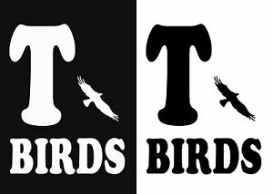 T-birds Grease stag hen party fancy dress iron on t-shirt transfers a5 a4