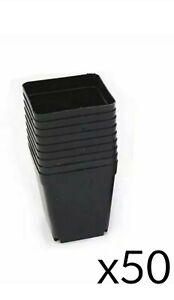 50x Pot Plastique Fleur Plante - Pot pour Semis et boutures petit pot jardin FR