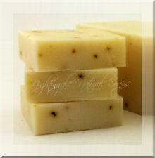 Eucalyptus Aloe Natural Soap 1 Large Bar Cold Flu Aromatherapy Shea Olive Oil