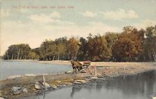 Lyons Iowa~Horse & Empty Buggy Cross Ford @ Daly's Lake~Postcard