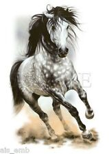 Glorious Gray Horse HEAT PRESS TRANSFER for T Shirt Sweatshirt Tote Fabric  248a