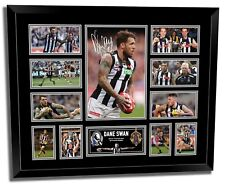 DANE SWAN COLLINGWOOD FC FRAMED MEMORABILIA