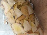 antipasto contorno o condimento funghi porcini tagliati vaso da 3 kg specialita'