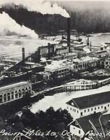 Postcard, Pacific Mills Ocean Falls B.C. Canada Vintage P52