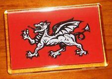 Anglo Saxon White Dragon England flag fridge magnet