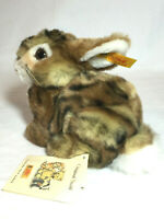 Steiff Dormili bunny rabbit plush with tags 77593 Germany Easter gift A