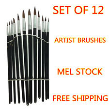 Art Artist Paint Brushes Set/Kit For Painting  Paints Craft Watercolour Oil pen