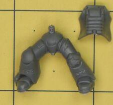 Warhammer 40K Lobos caballería de lobo atronador marines espaciales space marine piernas (C)