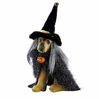 Katherine Collection Spooky The Witch Dog Puppy Halloween Collectible Doll Decor