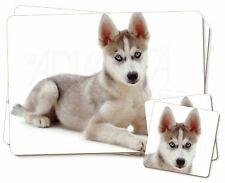 Siberian Husky Twin 2x Placemats+2x Coasters Set in Gift Box, AD-H54bPC