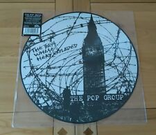 RARE The Pop Group Boys Whose Head Expanded 2016 New Picture Disc LP Post Punk