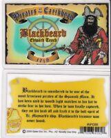 Pirates of the Caribbean BLACKBEARD Edward Teach Drivers License black beard