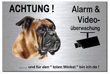 Boxer-Hund-Alu-Edelstahl-Optik-20 x15 oder 30x20 cm-Alarm-Video-Schild