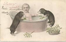 Dogs, Boy Bathing in a Bathtub with Two Dachshund Puppies, Funny Old Postcard
