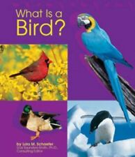 What Is a Bird? (The Animal Kingdom)