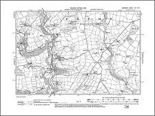 old map Somerset 1904 Walton 52SW repro Street