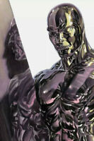 Fantastic Four Antithesis 2 Alex Ross Silver Surfer Virgin - NM or Better