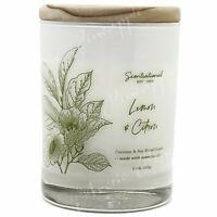 Scentsational Natural Soy Blend 11oz 1 Wick Medium Candle - Lemon & Citron
