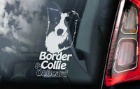 Border Collie on Board - Car Window Sticker - Sheepdog Dog Sign Decal Gift - V06