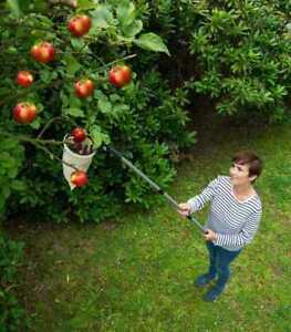 WENKO Obst Ernte Sammler XL Teleskop Stiel pflücken Helfer Garten Früchte Beutel