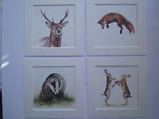 Watercolour jumoing fox, badger, fox, hare Prints (NEW BIGGER!) x 4, in mounts