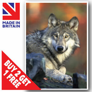 WOLF WOLVES POSTER PRINT A3 A4 A5 SIZES WILDLIFE UNFRAMED LAMINATED WALL ART