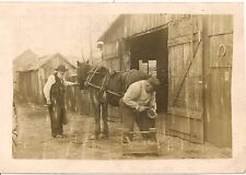 "Shoeing ""Charlie"" at Miller's Blacksmith Shop Robinson PA RP Postcard"