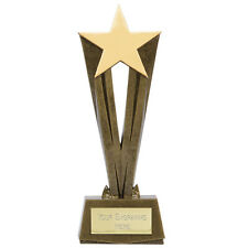 ACHIEVEMENT MULTI AWARD 17CM STAR & RESIN FLAMES TROPHY FREE ENGRAVING A1573A