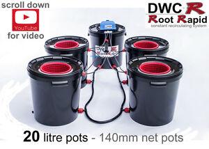 4 POT RDWC ROOT RAPID DEEP WATER CULTURE Bubbler Bubble Hydroponics dwc System