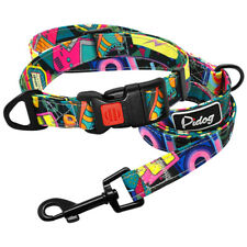 Dog Collar and Leash Nylon Collars Side Release Buckle with Safety Lock Device