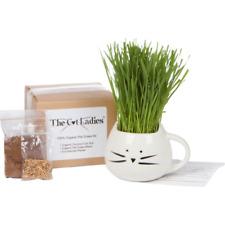 Kit para cultivar pasto para gatos
