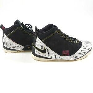 Nike Zoom Soldier II 2 Lebron 318694 101 Size 11 Mens Shoes Sneakers Rare! Used