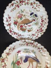 19th Century Hand Painted Porcelain Bird Plates - Free Postage