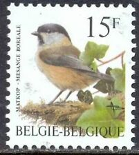 Belgium**Willow Tit-Poecile montanus-Bird-Mésange-BUZIN-1997-Oiseau-Matkop-Vogel