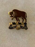 Authentic US Army 10th Cavalry Regiment DI DUI Unit Crest Insignia P23