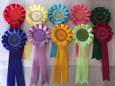 5 X Well Done And 5 X Special Award Rosettes Great Value