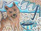 FINNISH SPITZ Drinking Coffee at Beach 8x10 Collectible Dog Pop Art Print Signed