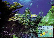 Set 3 Maxicards United States USA Florida Keys 2008 Fish Coral Marine Life Ocean