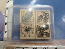 pine cone poinsettia acorn flower set of four STAMPIN UP!  RUBBER STAMP 5M