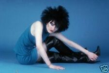 Siouxsie and The Banshees Great Colour 10x8 Photo
